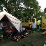 Physicians in Pre-Hospital Emergency Medical Systems